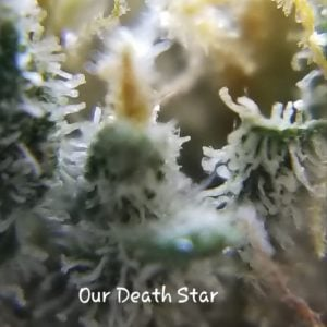 Our Death Star